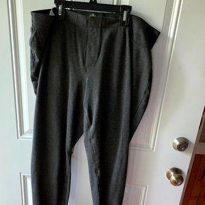 Women's Skinny Leg Gray Pants Size 0X